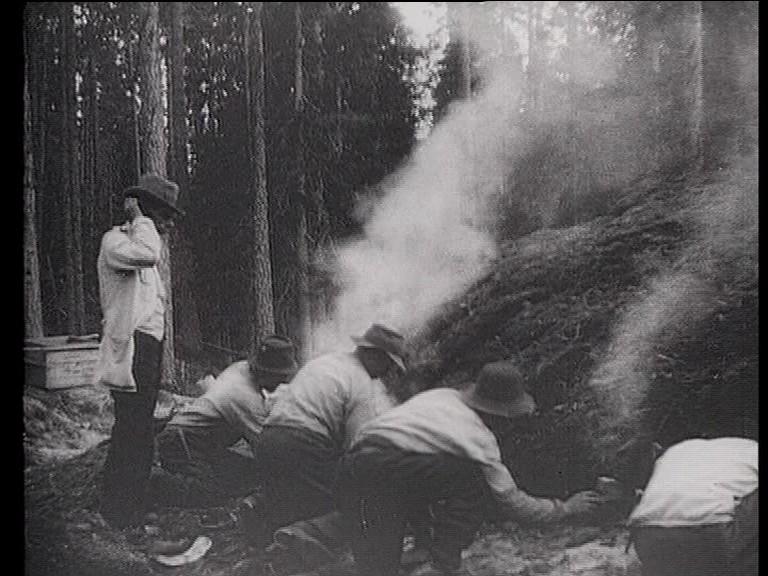 Five Finnish short silent films